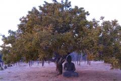 prana_grounds_buddah